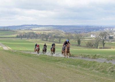Highfield Gallops