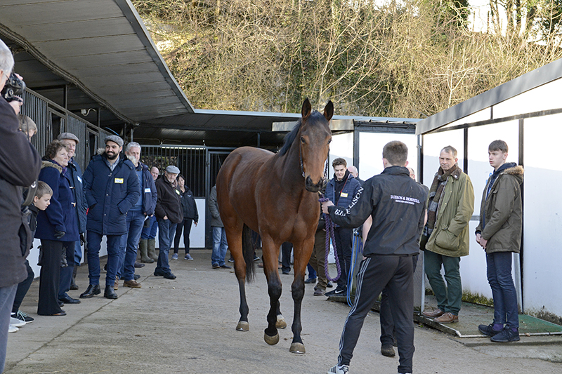 THE MEMBERS STABLE VISIT SUNDAY 11th FEBRUARY