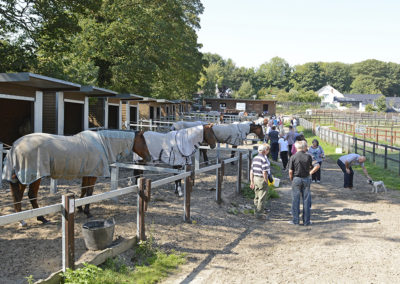 Outdoorstables_OpenDay_5301