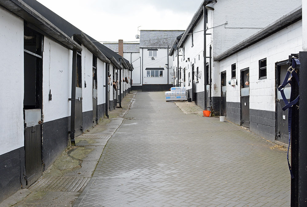 Our stables will not be open this year